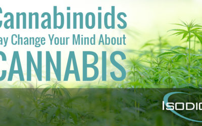 Cannabinoids May Change Your Mind About Cannabis